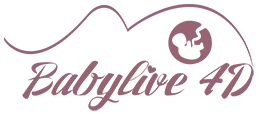 logo-headerx2